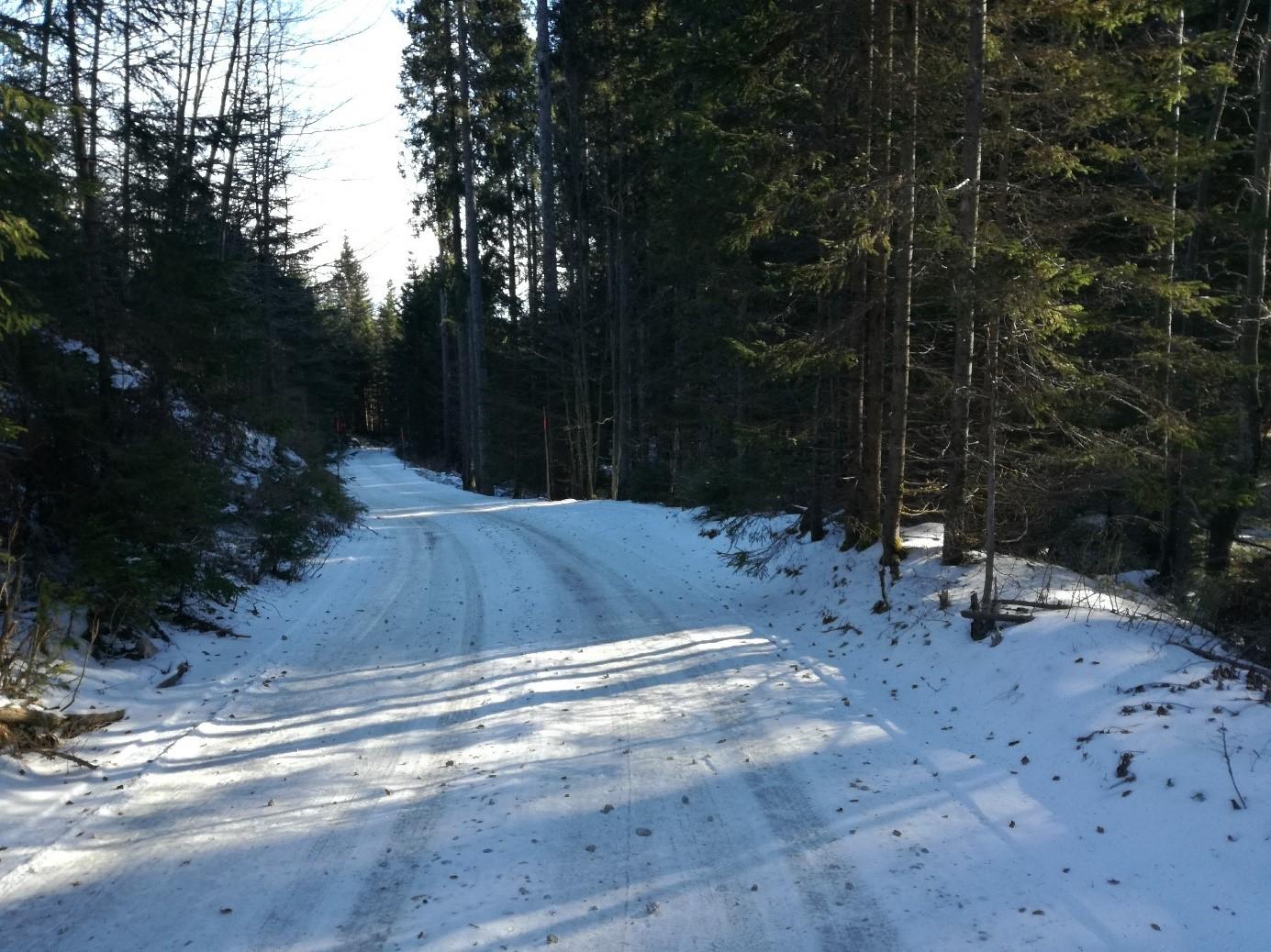 The road to Medvedova konta.
