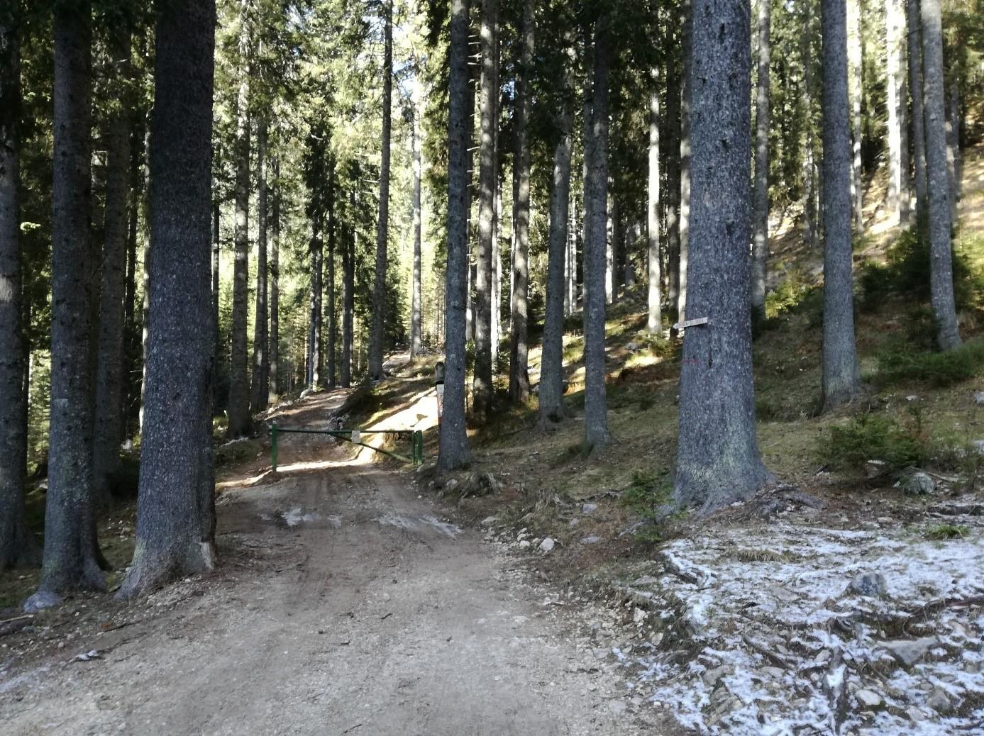 The starting point at Medvedova konta.