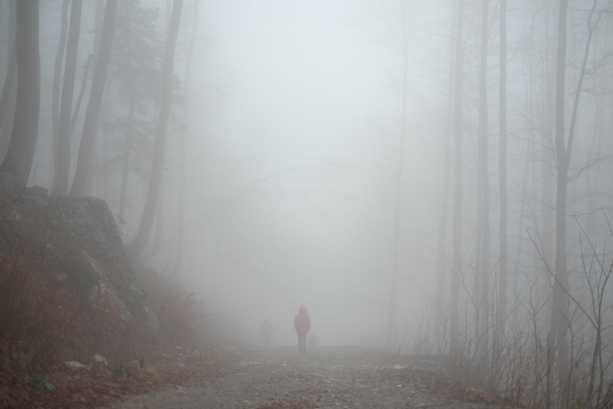 A child walking in the mountains on a foggy day. Photo by: Exploring Slovenia