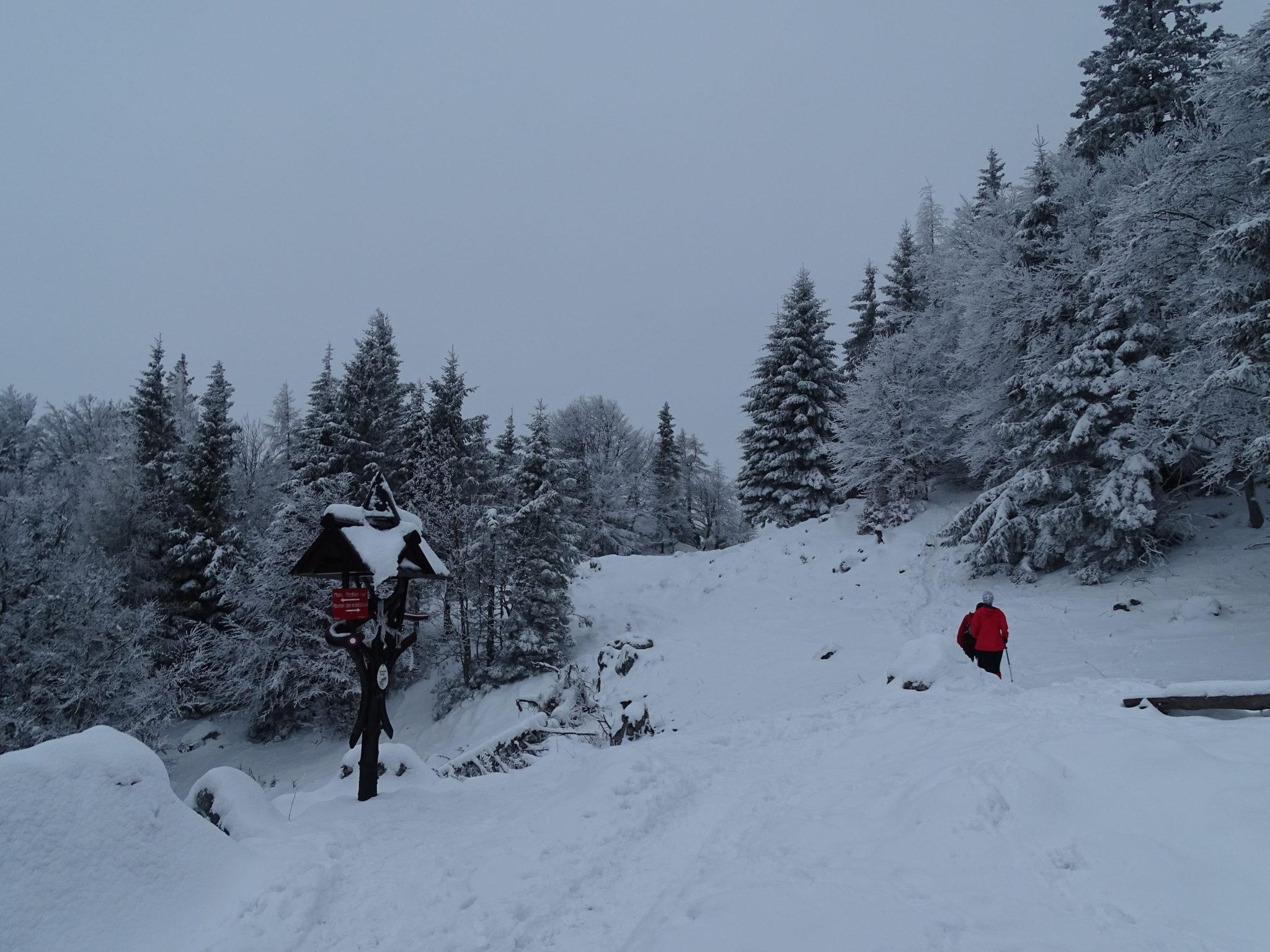 Hiking towards the mountain hut Kališče