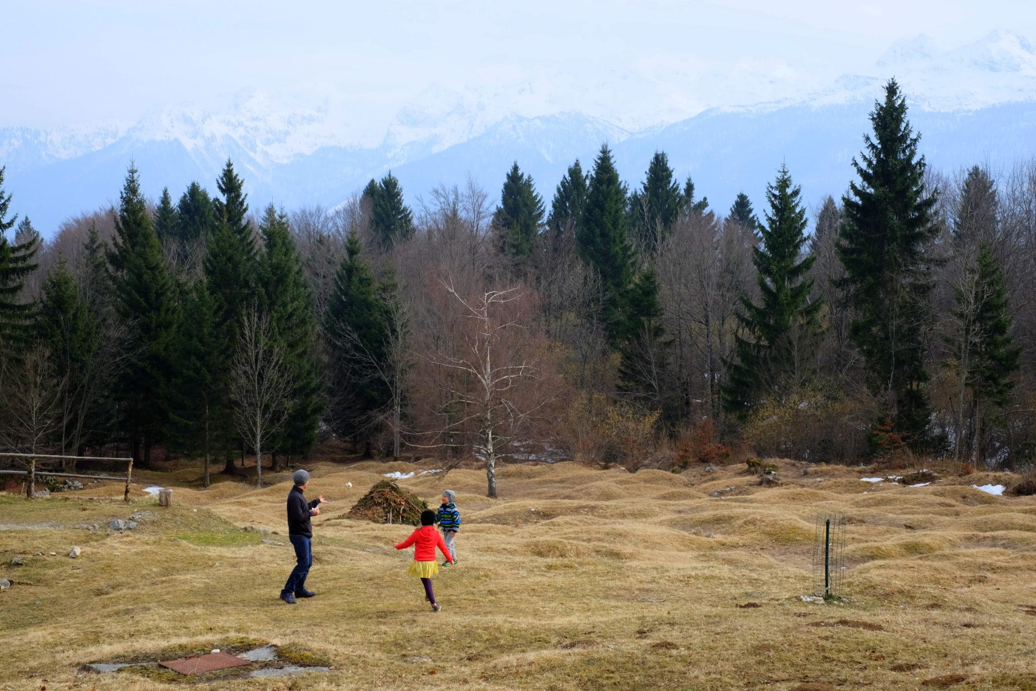 Mountain life at Vogar, Slovenia