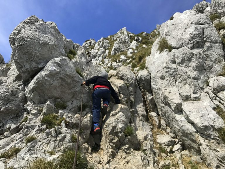 A little boy climbing a mountain