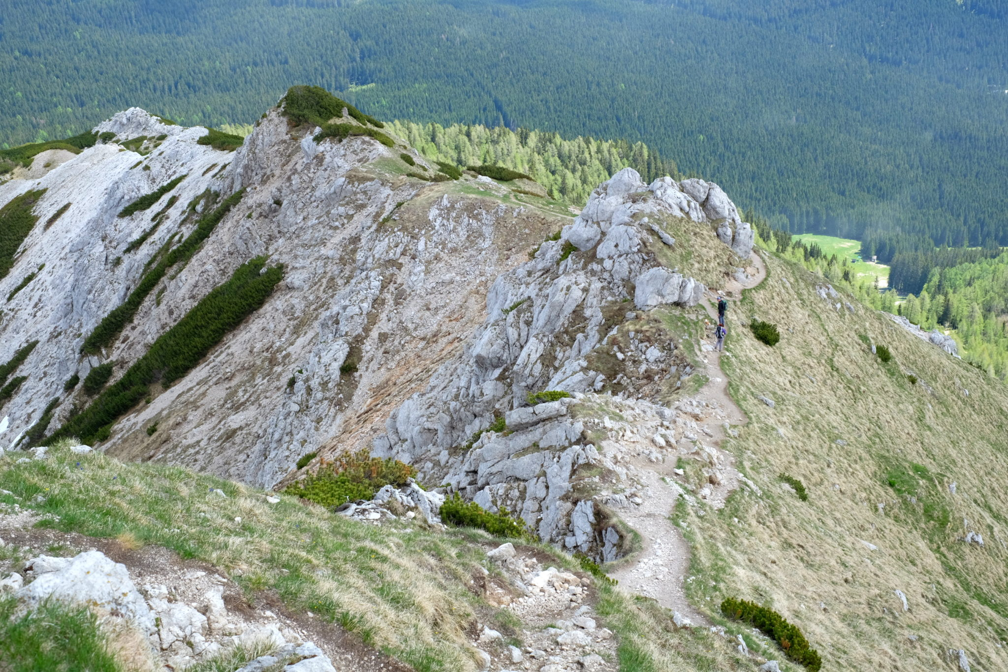A trail to the top of Viševnik follows the ridgeline