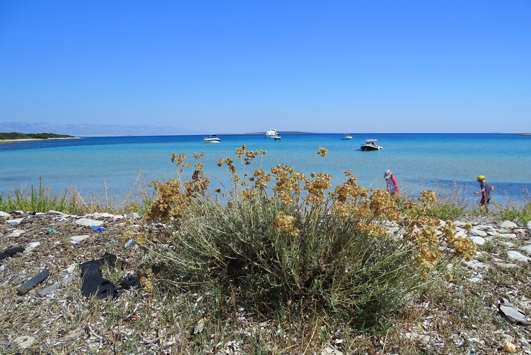A wild beach on the Olib Island, Croatia