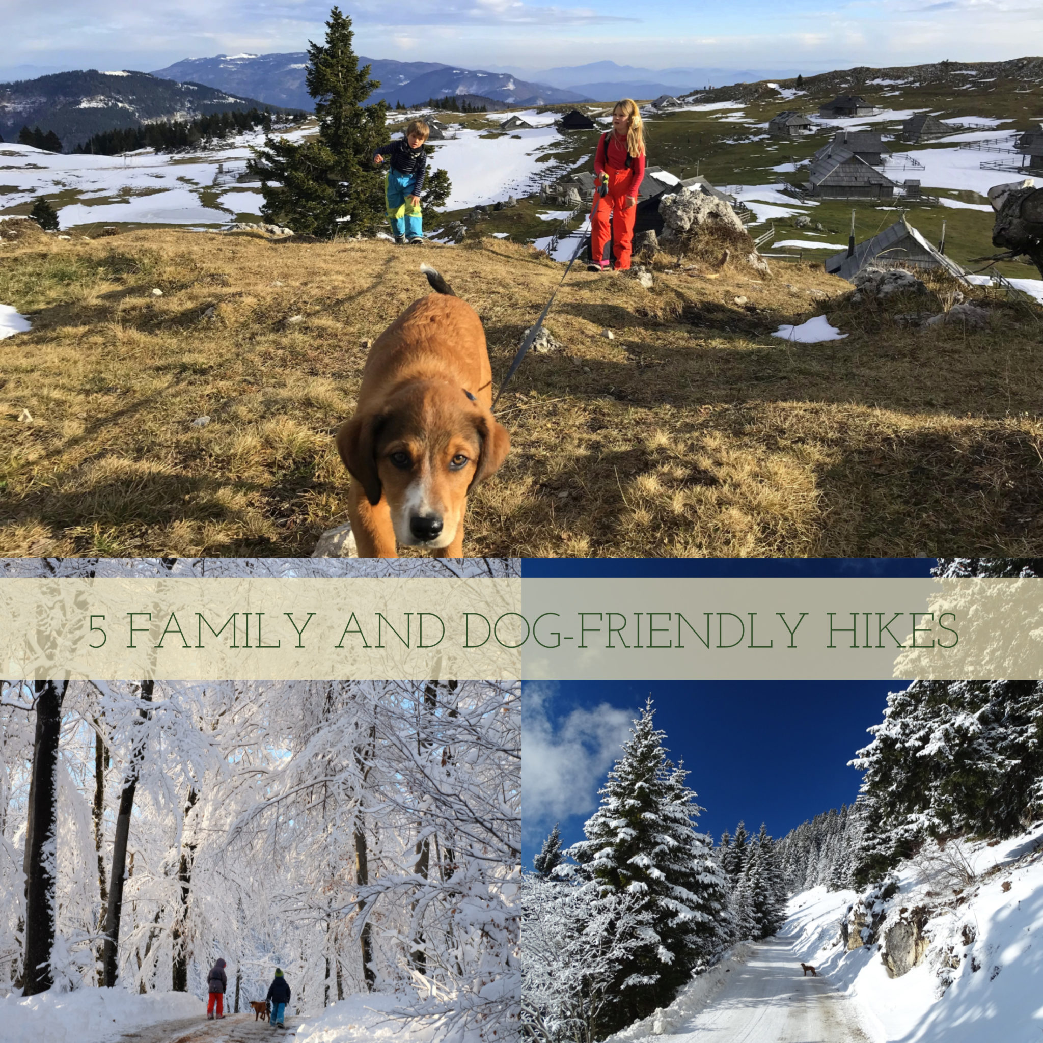 Five family and dog-friendly hikes in Slovenia