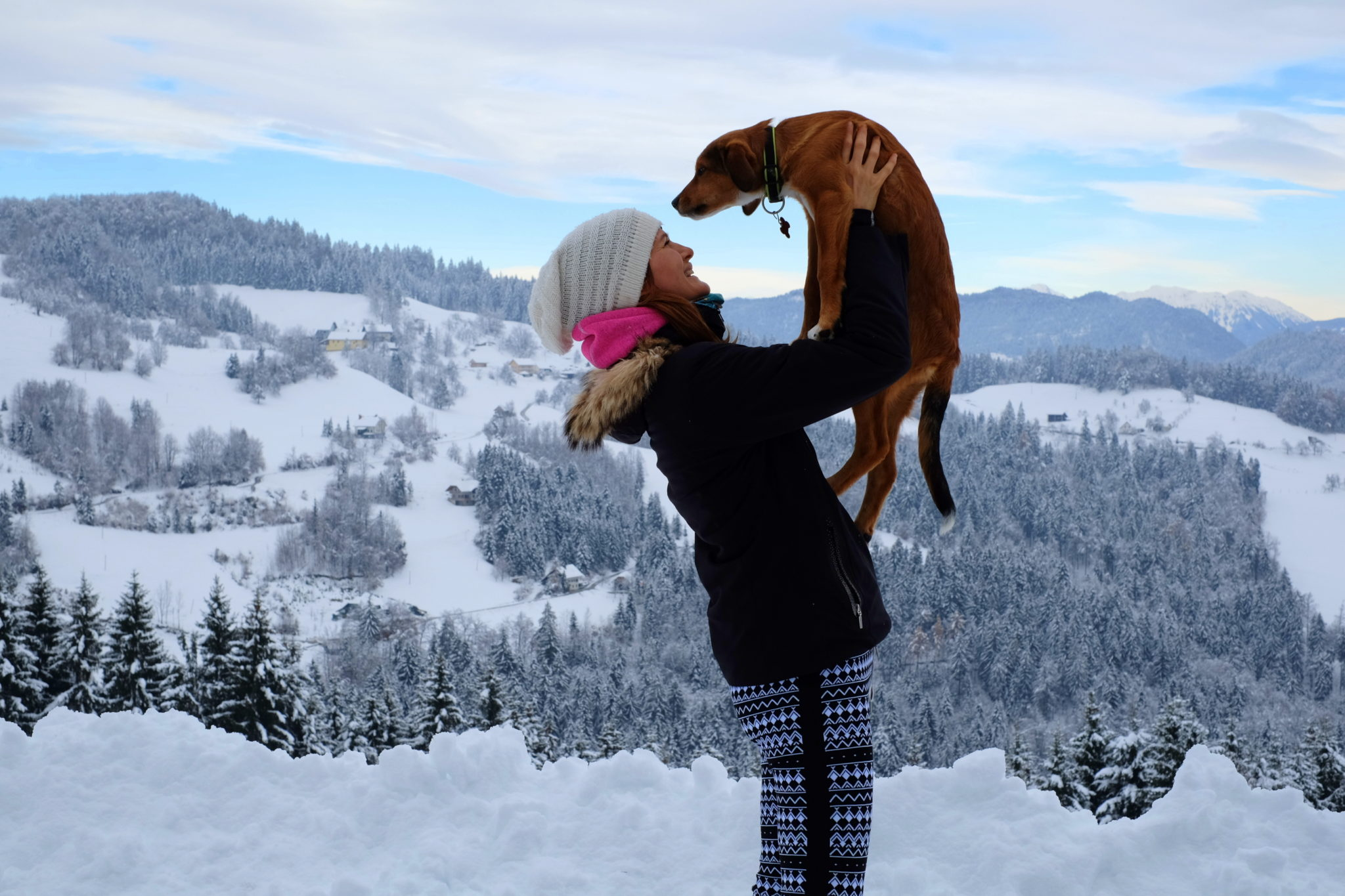 A cute puppy and her owner in the mountains