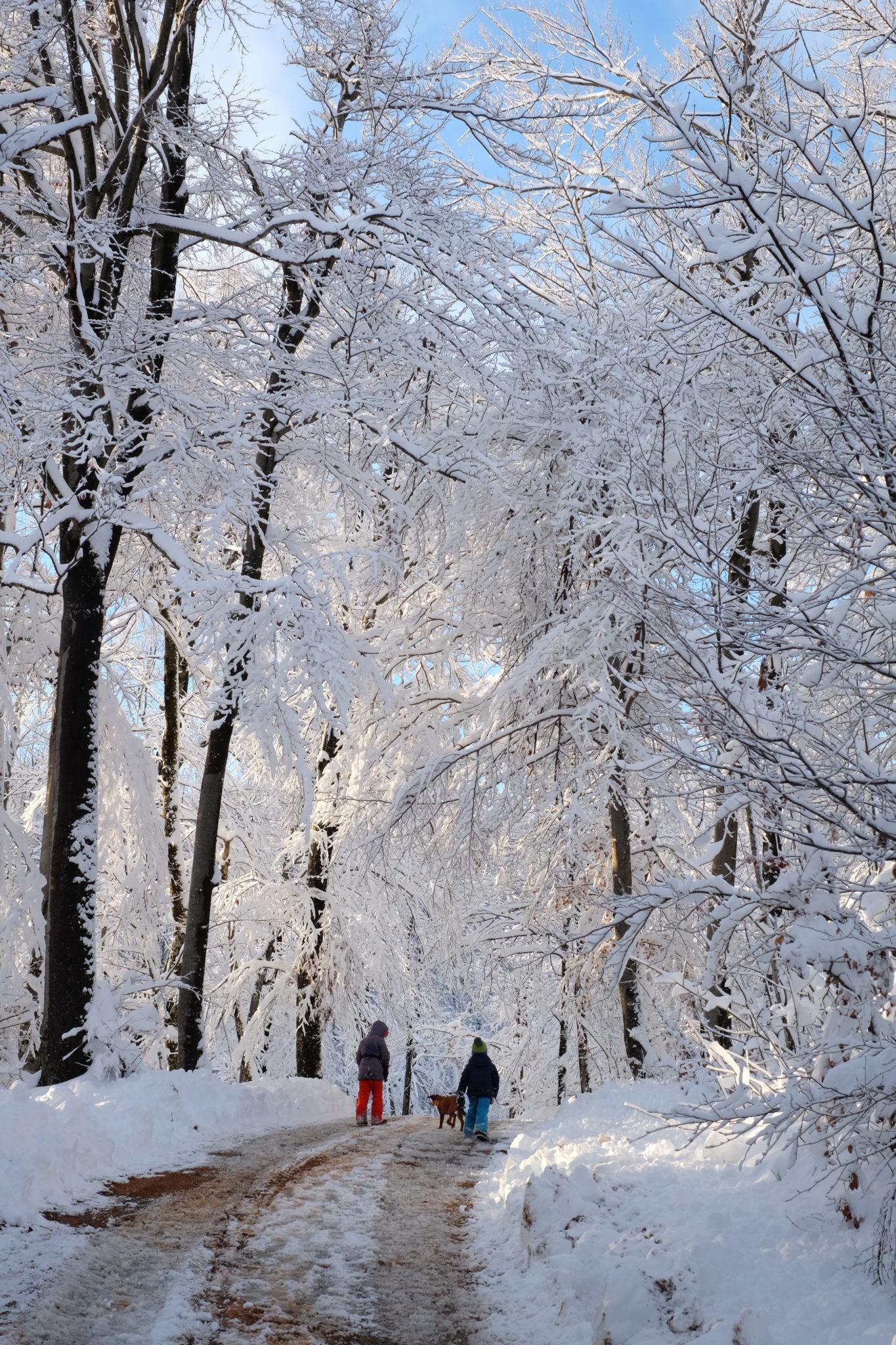 The white fairytale above Vrhnika, Slovenia