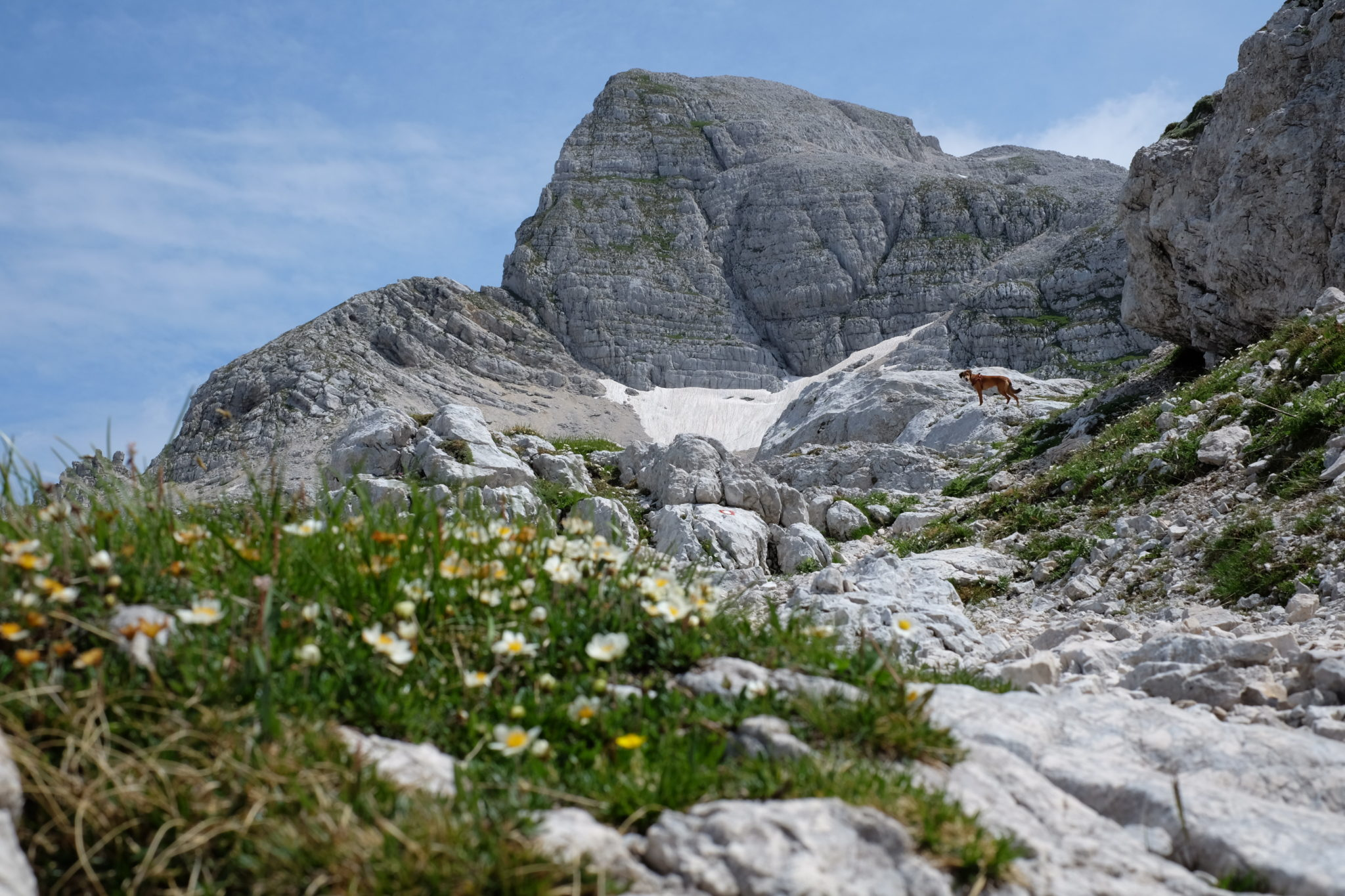 Beautiful Julian Alps, Mt. Stenar, Kriški podi, Slovenia