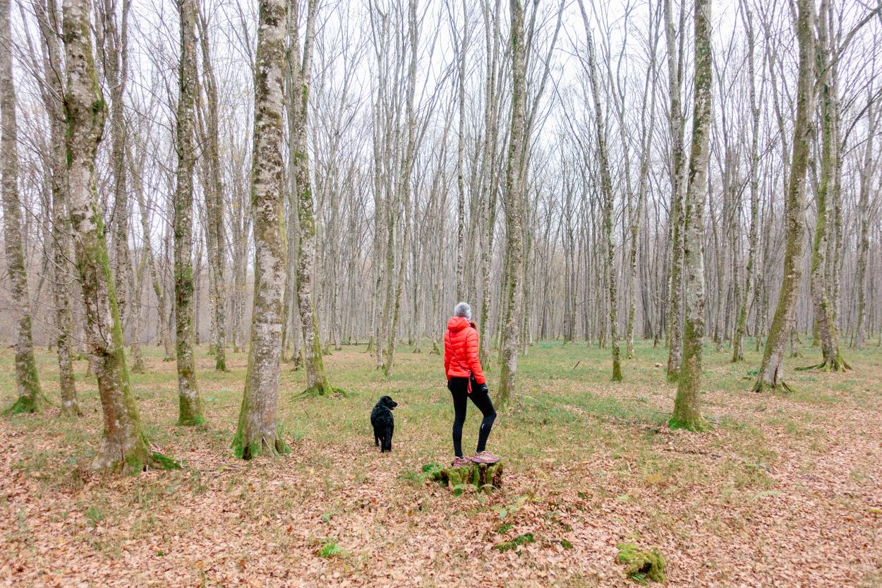 Hiking in Krško, Krakov Forest, Slovenia