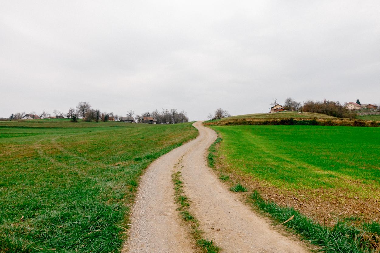 Krško countryside