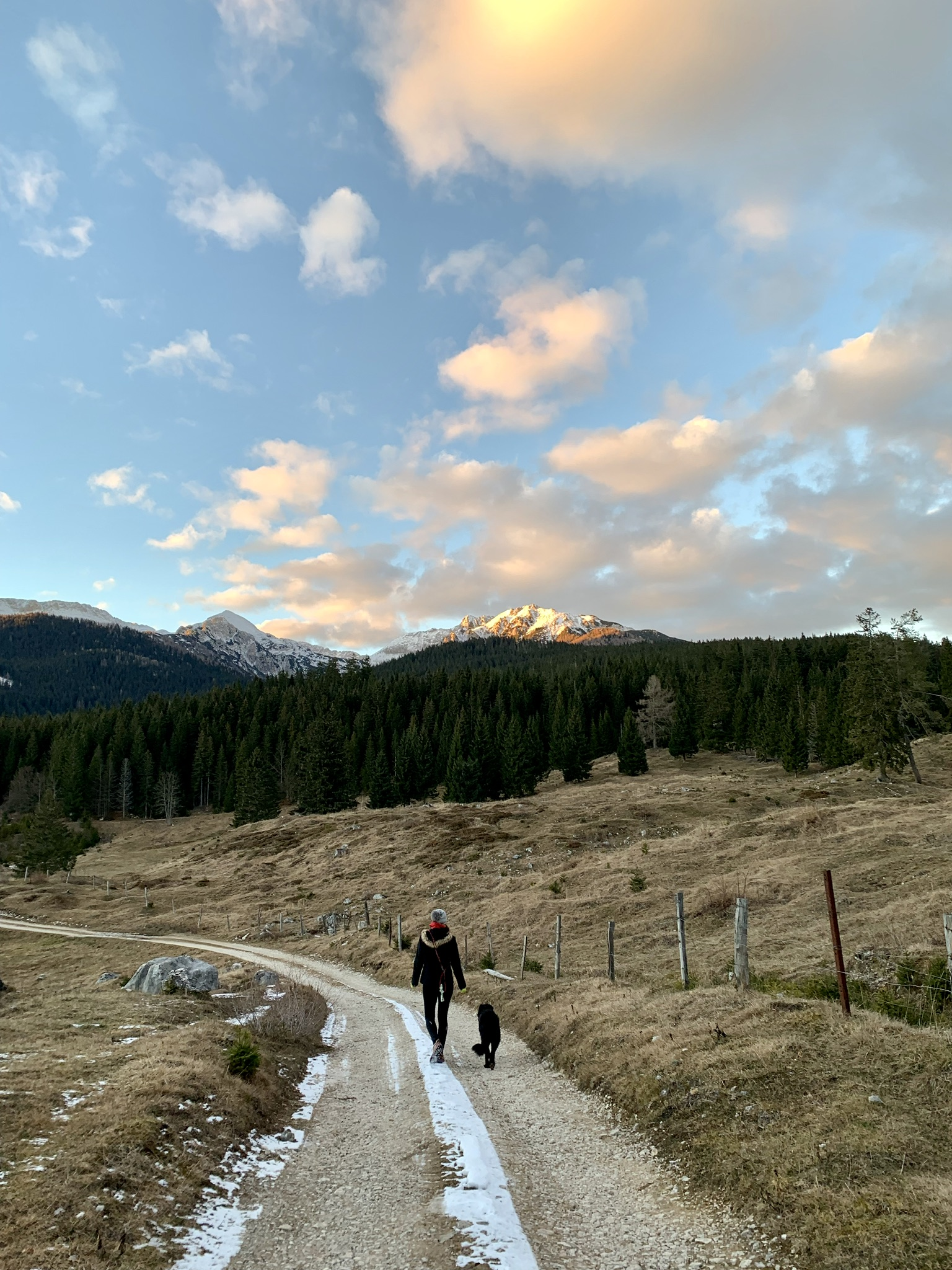 Hiking in Pokljuka for sunset, Triglav National Park, Slovenia